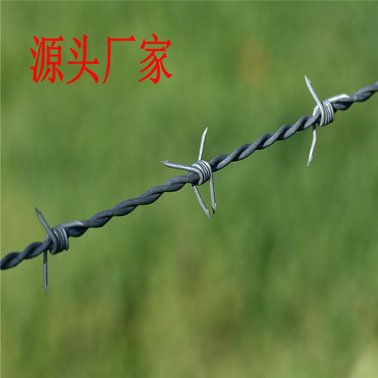 304不锈钢刺绳