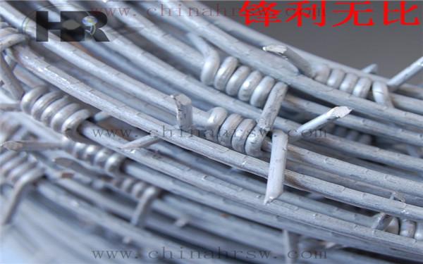 铁蒺藜防护网细节图