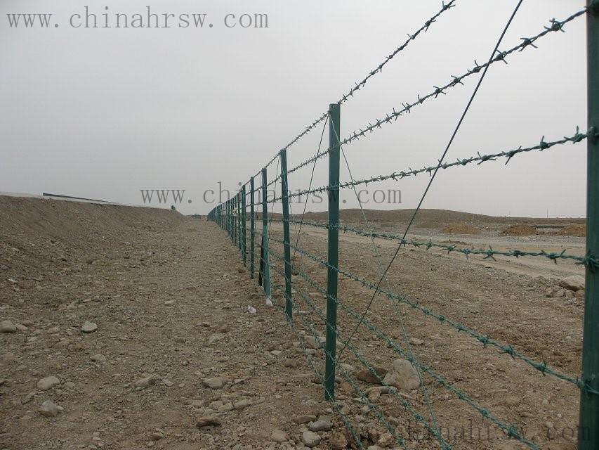 刺绳防护网安装