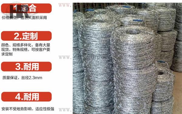 铁蒺藜防护网
