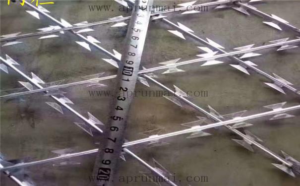 监狱刺丝围栏